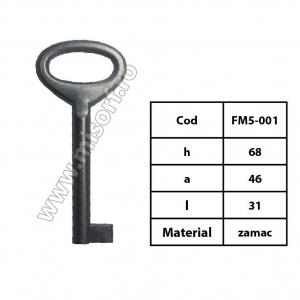 FM5-001